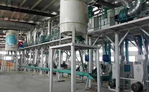 日产150吨玉米加工设备