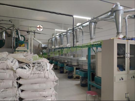 河南焦作日加工12吨石磨面粉机