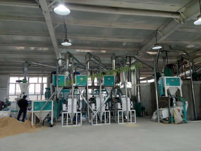 新疆和田30吨面粉成套设备投入生产