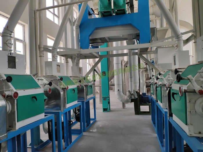 山西忻州燕麦(莜麦)制粉生产线投入生产